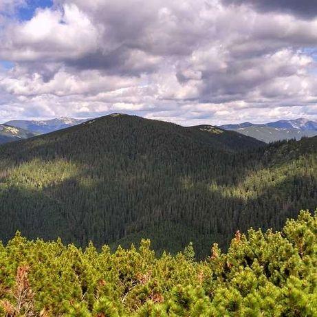 Программы и карты для походов в горы