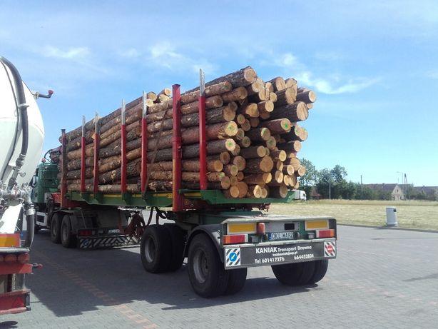 Skup drewna Tartacznego