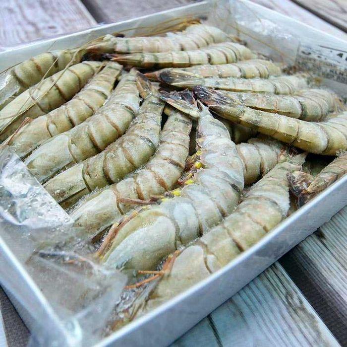 Черная тигровая креветка, 31-40 шт на кг. Киев - изображение 1
