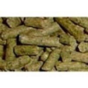 Wysłodki niemelasowane dla koni bydła kuz owiec i drobiu 30 kg