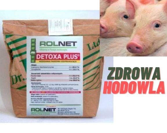 Detoxa Plus, 25 kg, mykotoksyny w paszy, mikotoksyny w zbożu