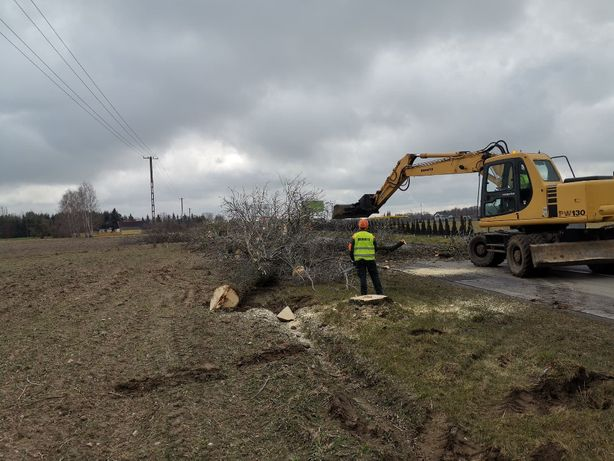wycinka drzew rembak mulczer podnośnik rozbiórki koparki wywrotka