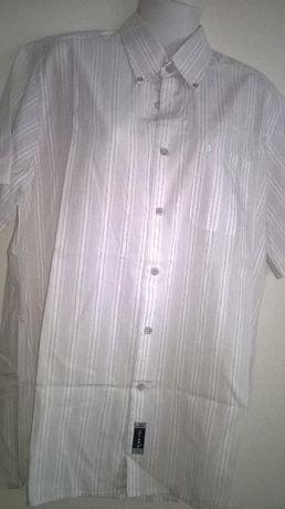 camisa L 100% algodao nova