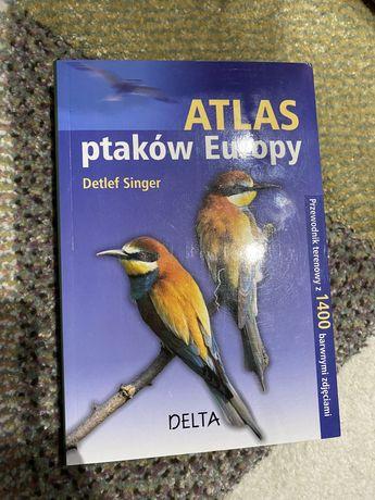 Atlas ptaków europy ksiazka poradnik