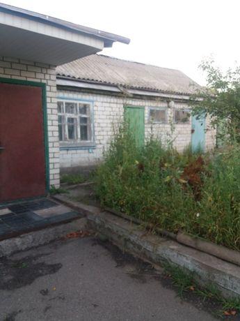 продам дом в Солоницевке