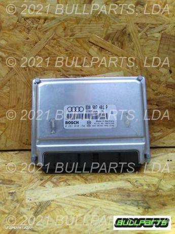 02810_10158 Centralina Do Motor Audi A4 (8d2, B5) 2.5 Tdi Quatt