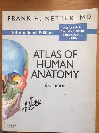 Netter atlas of human anatomy 6th