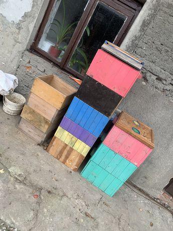Pszczoły Ule Pasieka