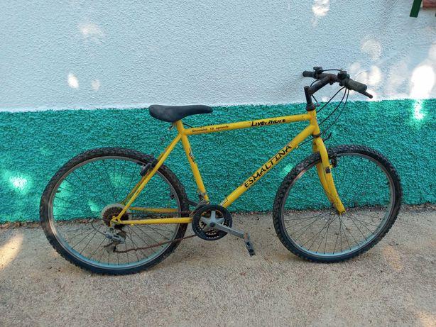 Bicicleta shimano esmaltina frami fabrico portugues
