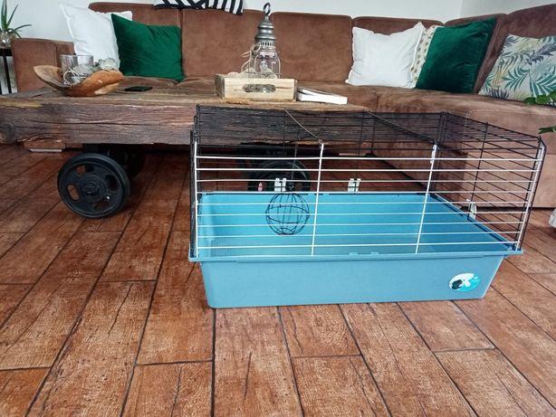 Klatka dla świnki morskiej królika gryzoni