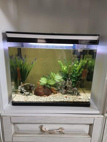 Продам безшовный аквариум 55л