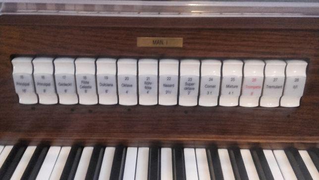 organista/skrzypaczka/skrzypce/śpiew na pogrzeb, ślub, oprawa muzyczna