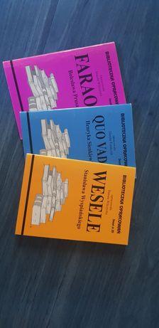 Biblioteczka opracowań - lektury