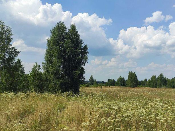 Земельный участок 14 Га в Вышгородском районе