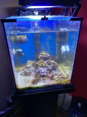 sprzedam akwarium morskie z dedykowaną z szafką w bardzo dobrym stanie