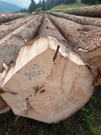 Drewno świerkowe