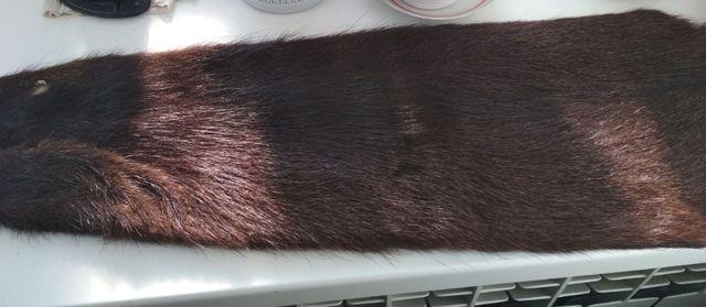 Шкурка нутрии темно-коричневая