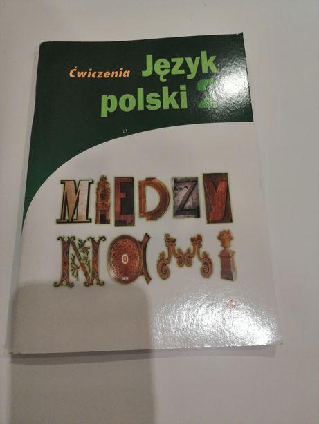 NOWE Język polski Między nami Ćwiczenia 2