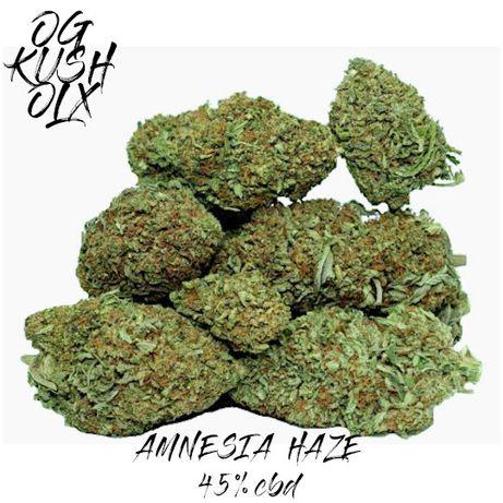Legalna Marihuana 50 Gram Amnesia Haze 45% Susz CBD THC JAKOŚĆ INDOOR