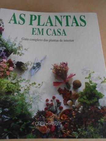 aprenda a ter as plantas sempre viçosas