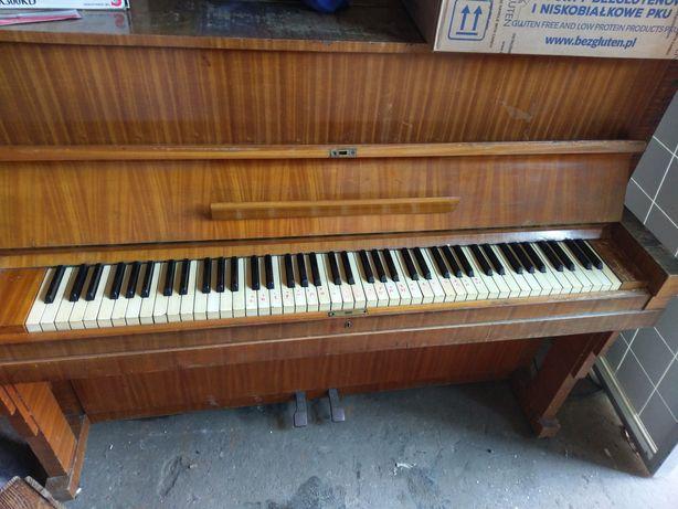 Polskie Pianino legnica