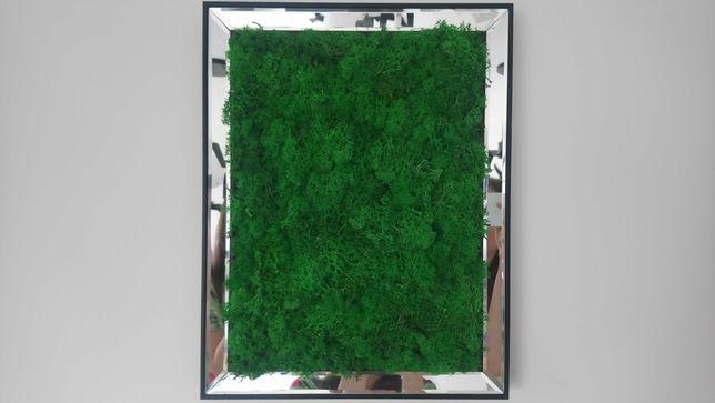 Ramka lustrzana, obraz z mchu, zielony las, skandynawski mech 45x35