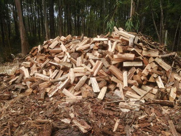 Lenha de madeira de pinho ou pinho / eucalipto (mistura)