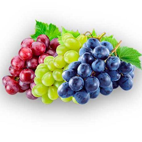 Продам саженцы винограда разных сортов. Предзаказ на осень 2021 г.