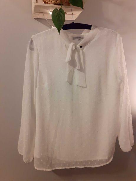 Koszula Greenpoint XL