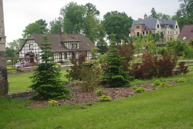 Pałac, park, pensjonat, folwark, gospodarstwo rolne 220 ha, przepiękne