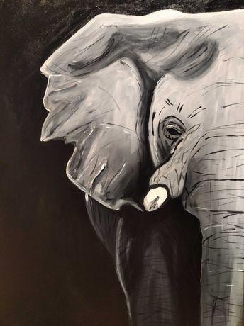 Obraz 50x70 słoń