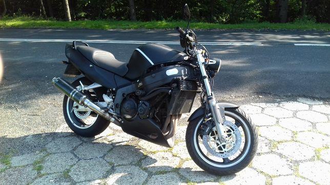 Honda cbr xx naked
