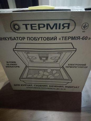 Инкубатор Термия-60