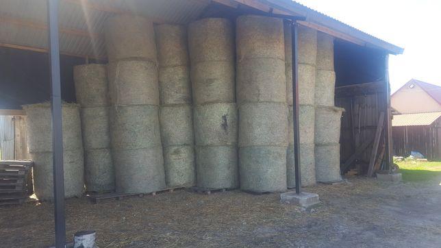 Siano dla koni i kucyków tegoroczne z łąk przesiewanych # transport