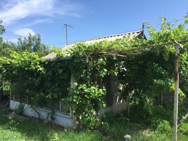 Дачный участок с домиком и садом (Старый Мерчик)