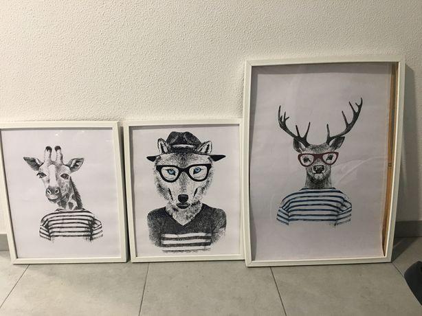 Molduras + posters