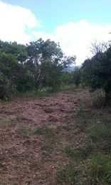 Terreno Rustico 49.000 m2 C/ Casa 150 m2 a Recuperar
