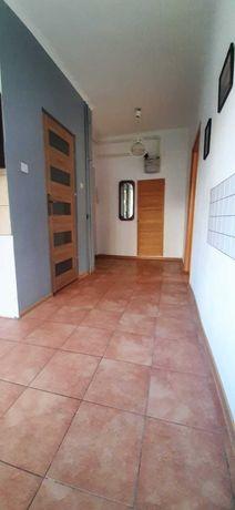 Mieszkanie do wynajecia sienkiewicza 2 pokoje czynsz w cenie