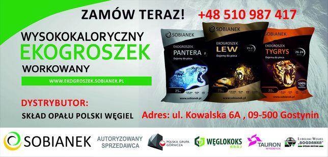 NOWOŚĆ Ekogroszek Lew Plus 29-27 Mj Antysmogowy
