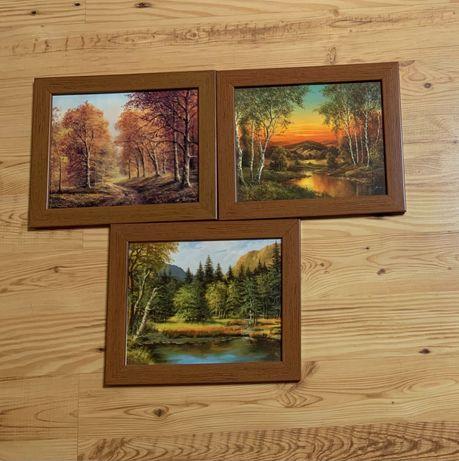 Obrazki z krajobrazem