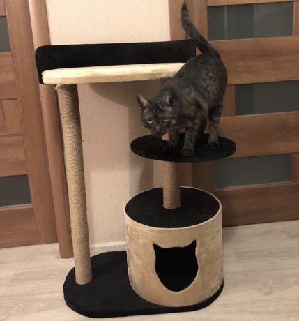 Новый домик  для кота