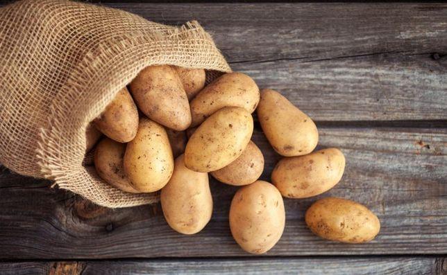 sprzedam ziemniaki różne odmiany kazda ilość