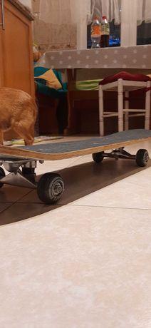 Skate Medium +10
