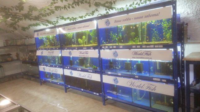 Аквариумная Витрина для продажи рыбок  720л
