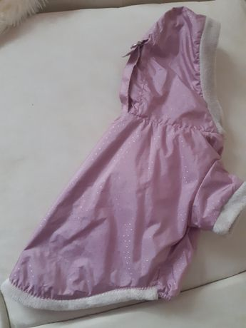 Одежа для собаки
