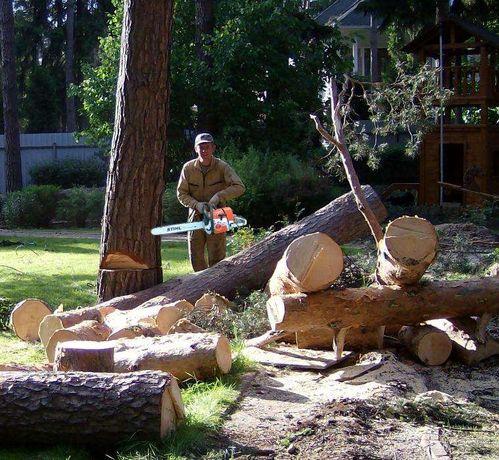 Спиливание деревьев. Валка деревьев. Распилка дерева на дрова