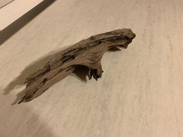Korzeń do akwarium 25 cm