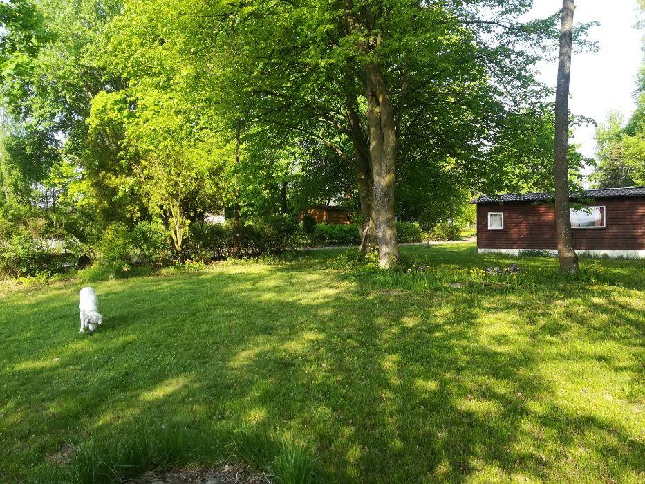 Agroturystyka,okolice W-wy,luksusowe domki nad rzeką ,spływy kajakowe Warka - image 1