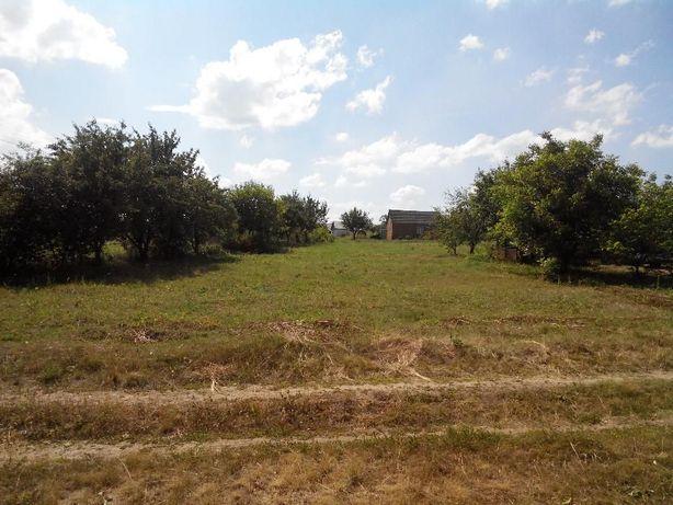 Участок 15 соток в Гожулах, под застройку, дачу, огород
