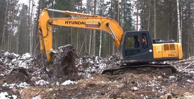 Корчевание деревьев, очистка и выравнивание участков